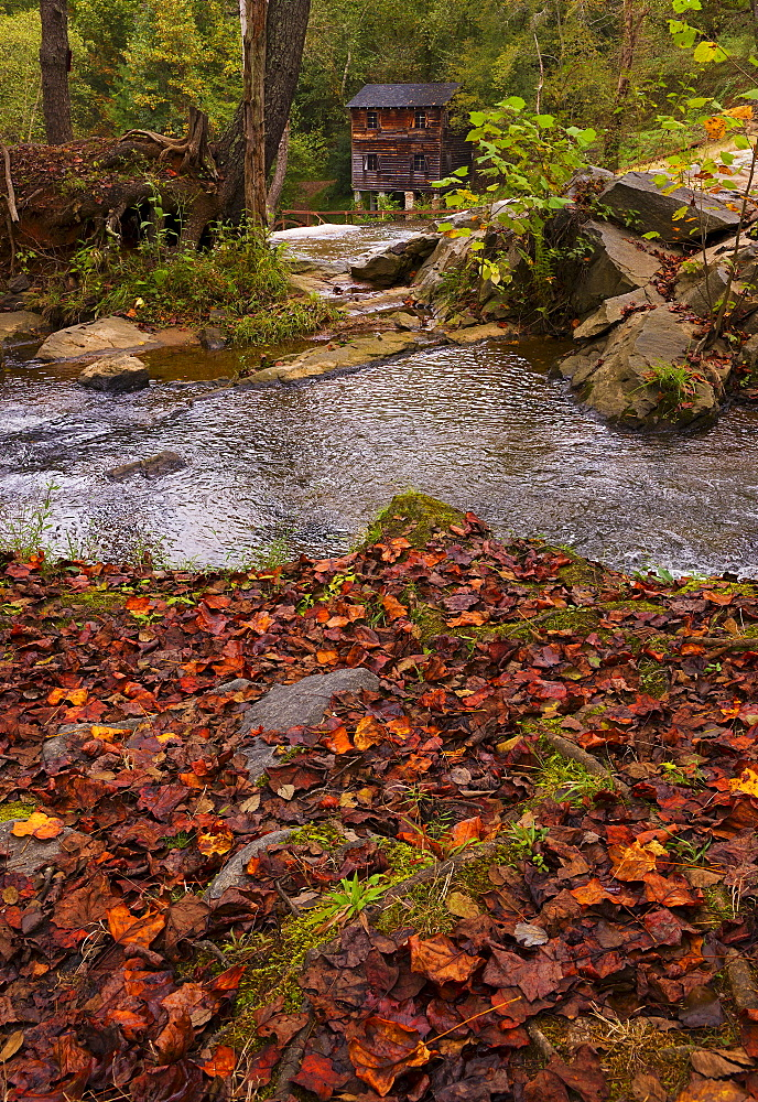 Meytre Grist Mill, Stream in forest, Meytre Grist Mill, McGalliard Falls, Valdese, North Carolina
