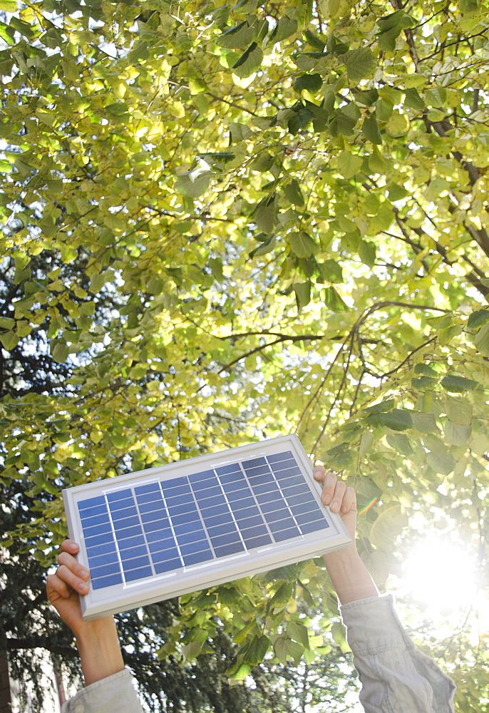 Hand holding solar panel in park