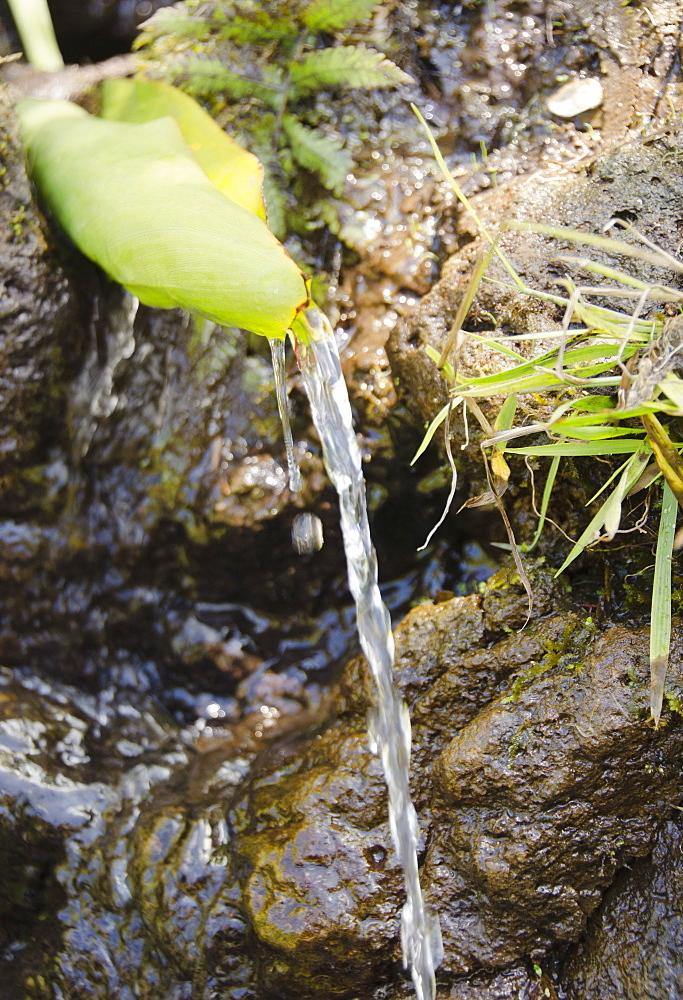 Kalalau Trail, Stream, USA, Hawaii, Kauai, Kalalau Trail