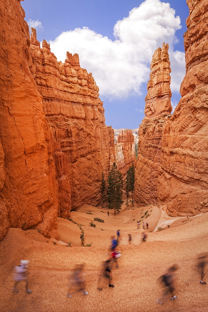 Hikers along Navajo Trail, Hikers along Navajo Trail, Bryce Canyon National Park, Utah