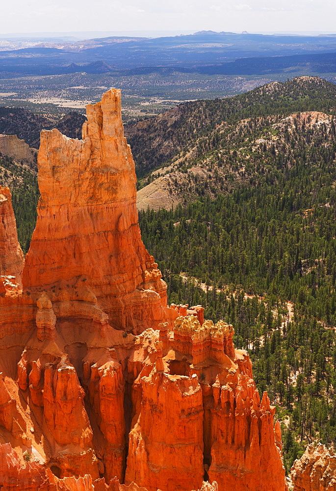 Elevated view of rocks, USA, Utah, Bryce Canyon