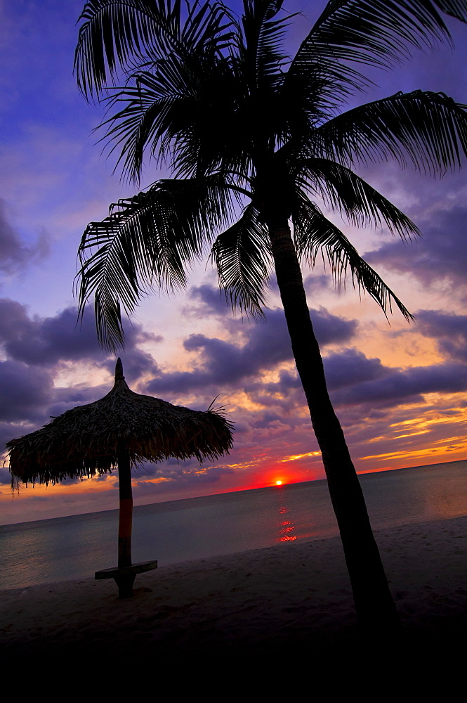 Aruba, silhouette of palm tree and palapa on beach at sunset