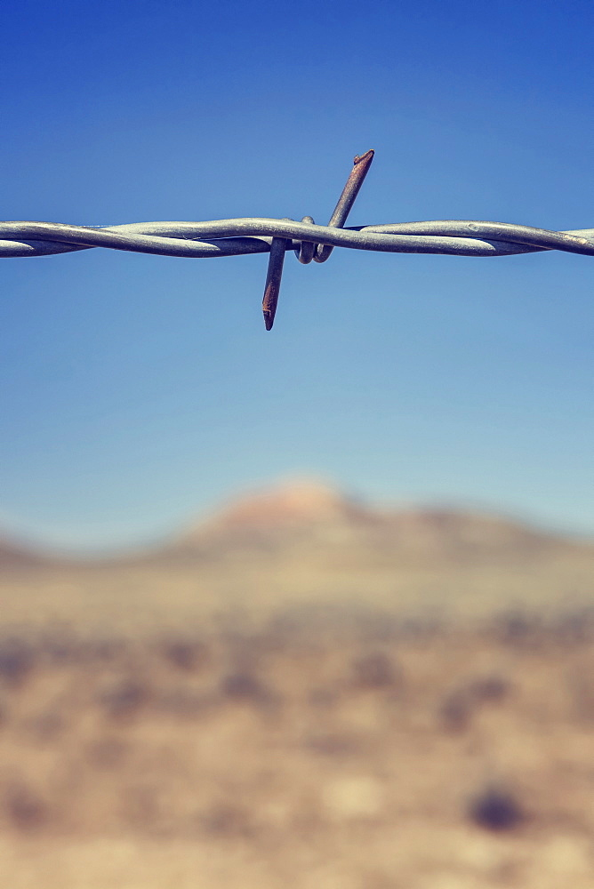 Close-up of barbed wire, Buffalo, Wyoming