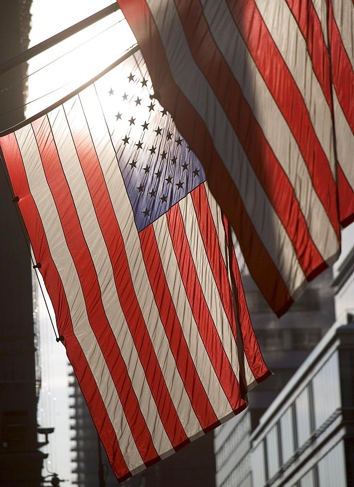 USA, New York City, Backlit American flags - 1178-20910