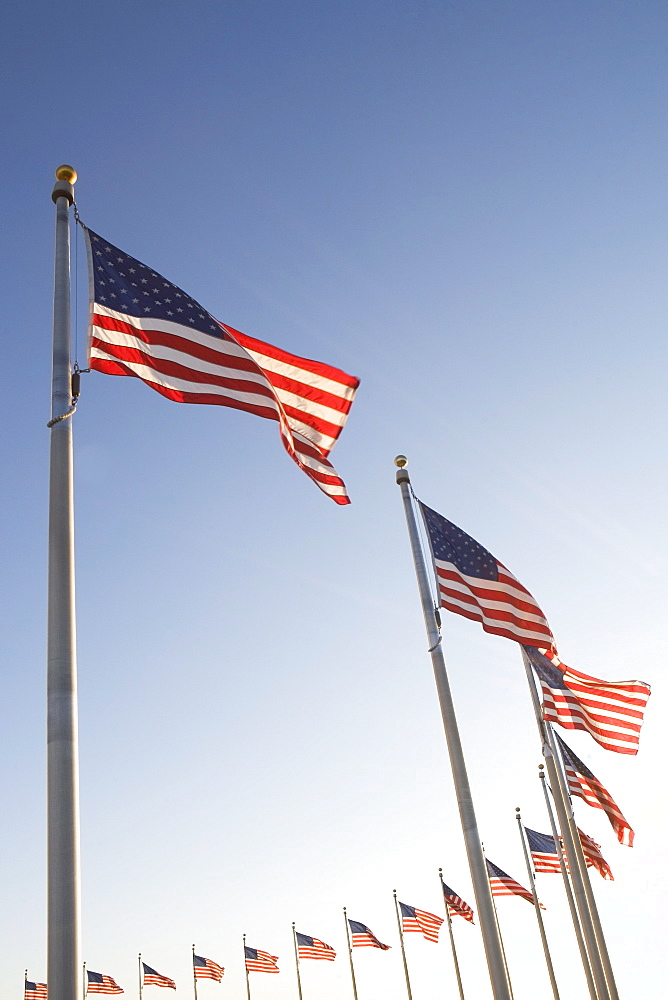 USA, Washington DC, low angle view on american flags