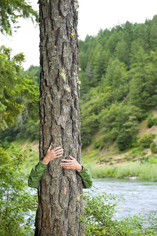 Hiker hugging tree