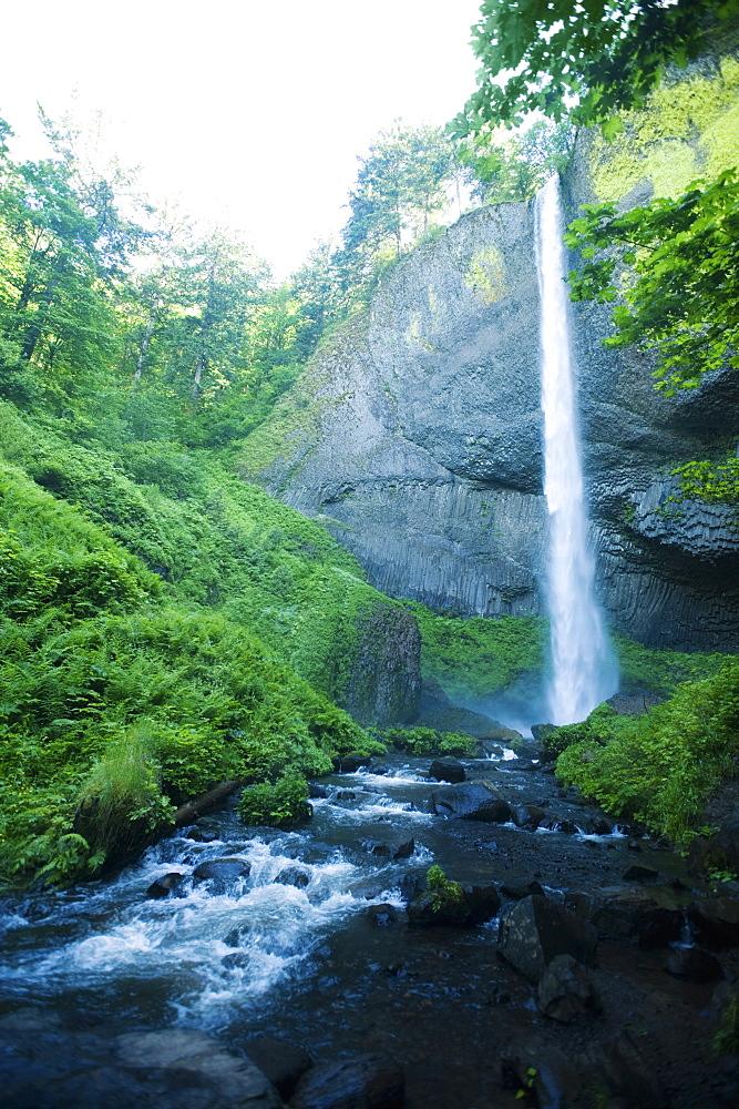Lush canyon and waterfall