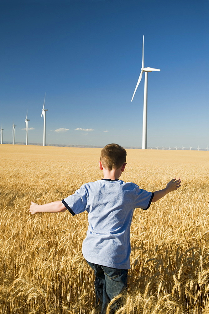By running through field on wind farm