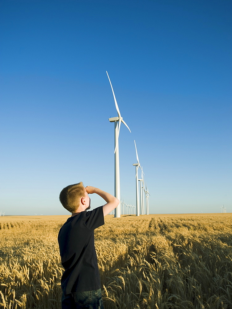 Boy looking up at windmills on wind farm