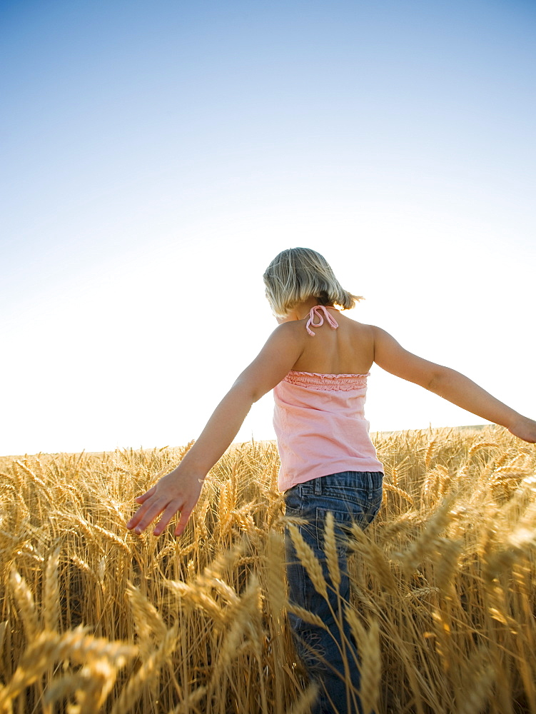 Girl walking through tall wheat field
