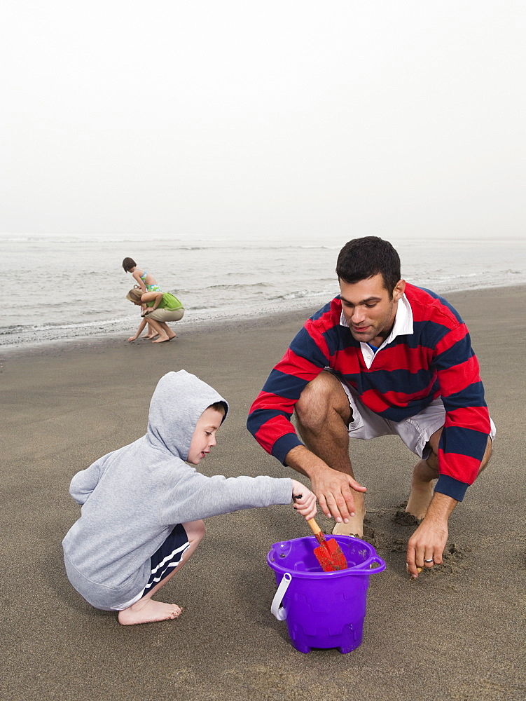 Family looking for shells on beach