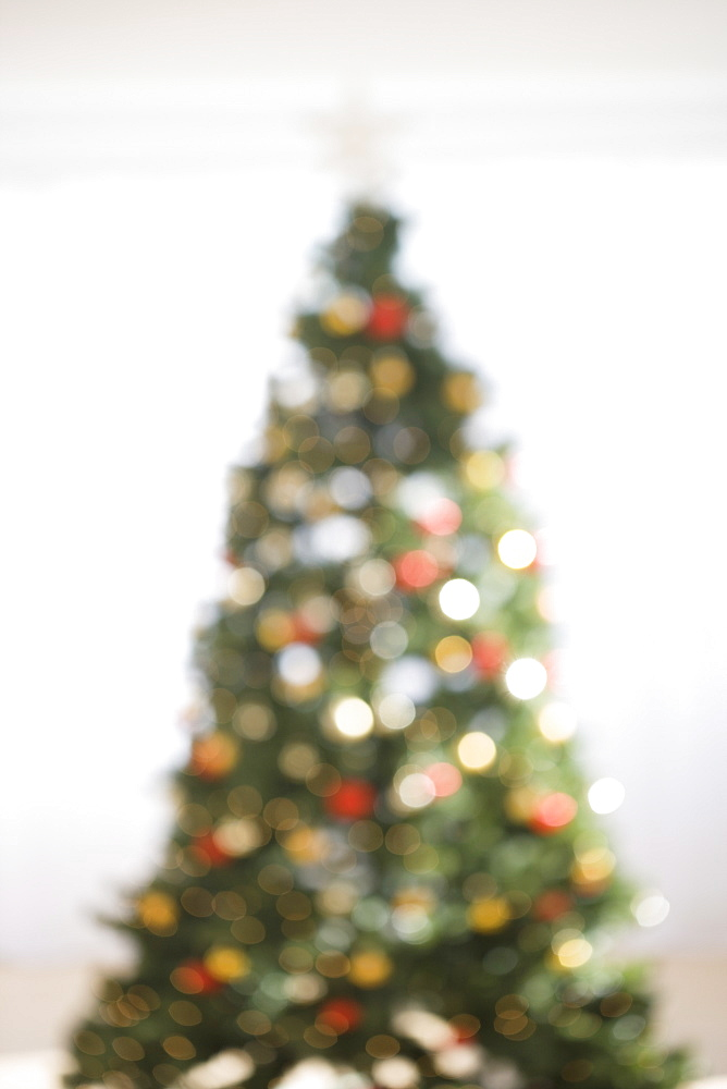 Blurry shot of Christmas tree