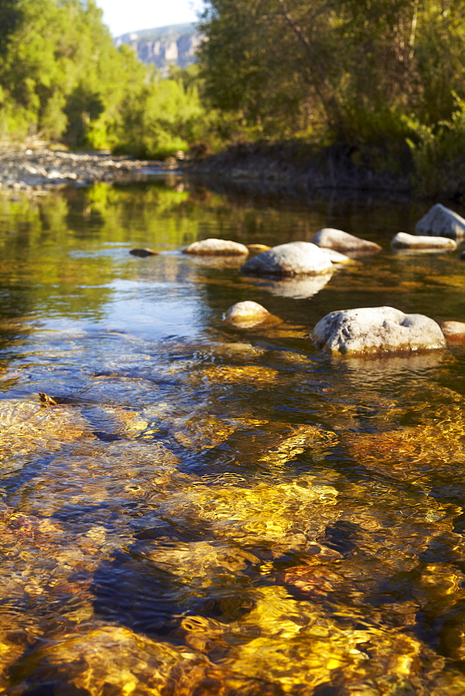 Mountain stream, Colorado, USA