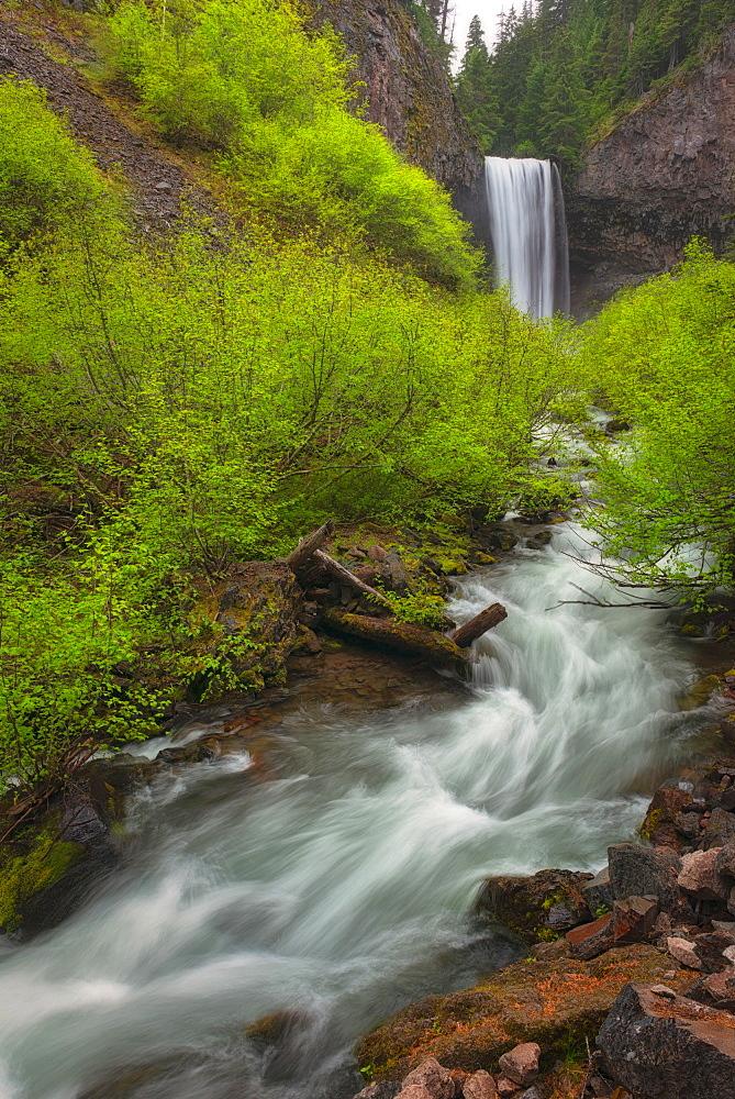 Tamawanas Falls, Hood River County, Oregon
