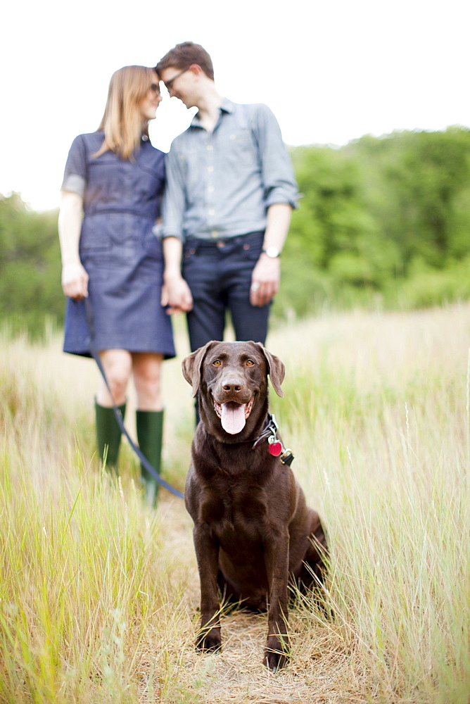 Portrait of young couple with dog, USA, Utah, Salt Lake City