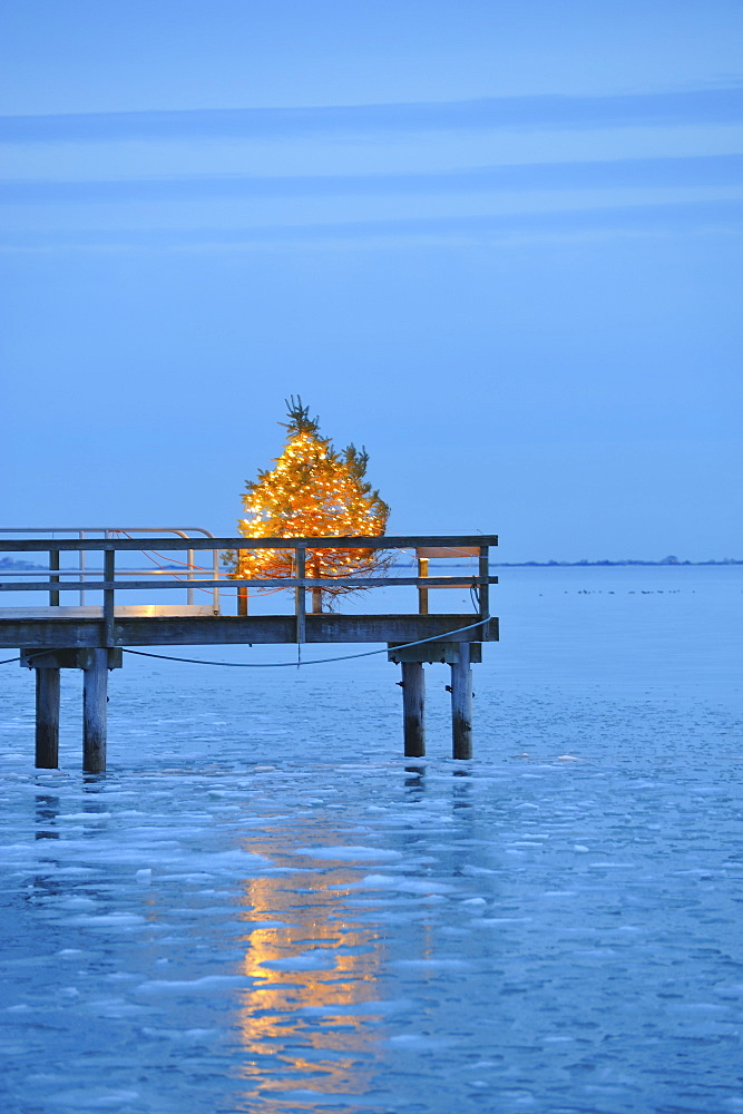 Christmas tree with yellow lights on pier, blue sky and water at dusk, South Shore, Massachusetts