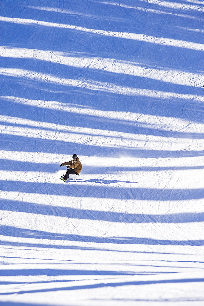 Man snowboarding across shadows, Whitefish, Montana, USA