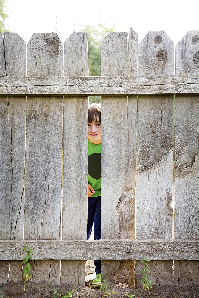 Boy (6-7) looking through hole in fence