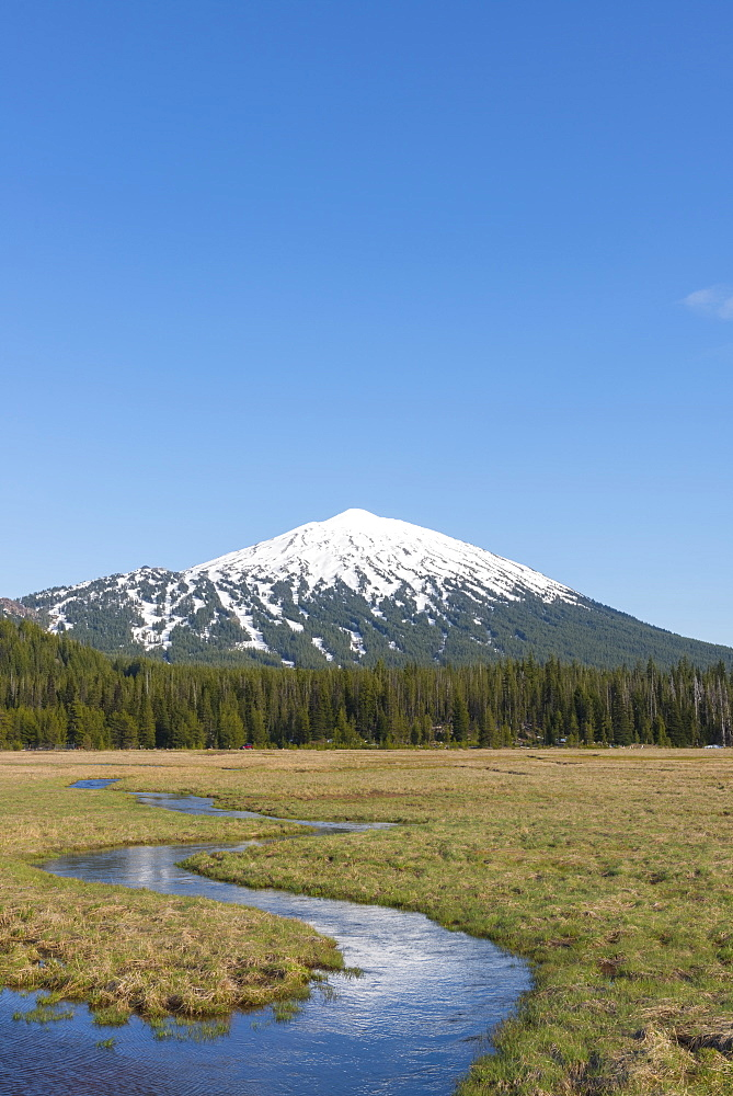 View of snowcapped Mount Bachelor, USA, Oregon, Mount Bachelor