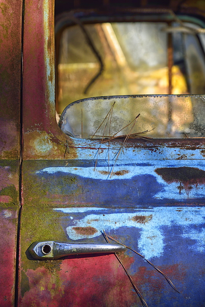 Colorful door of abandoned truck