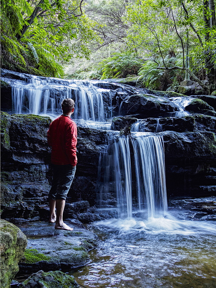 Australia, New South Wales, Katoomba, Man looking at waterfall in Leura Cascade