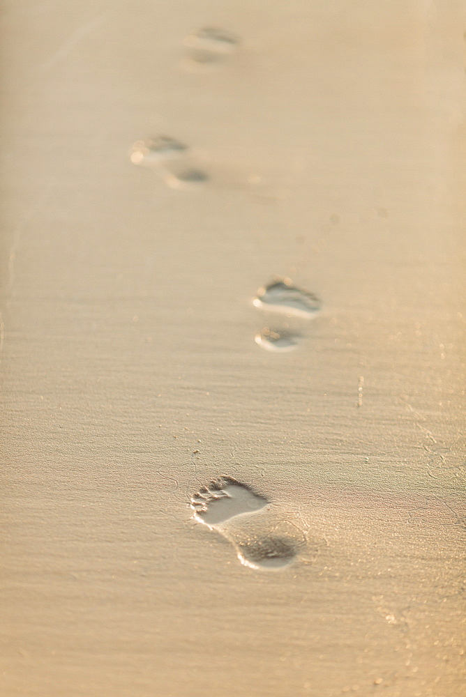 Footprints in sand - 1178-26326