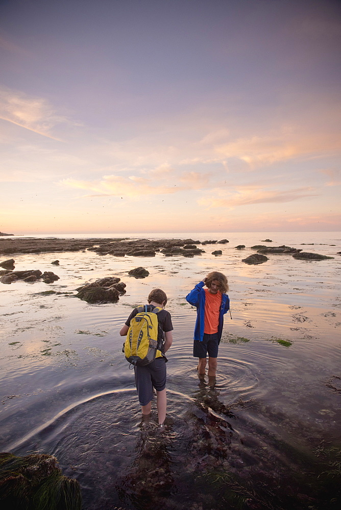 Teenage boys exploring tide pools in La Jolla, California