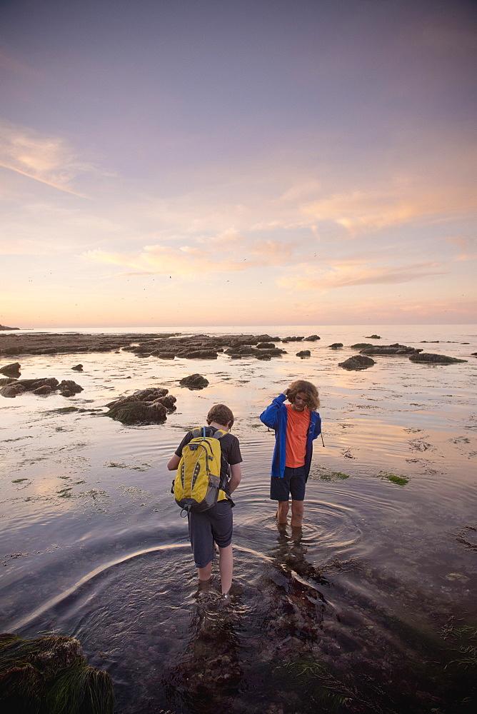 Teenage boys exploring tide pools in La Jolla, California