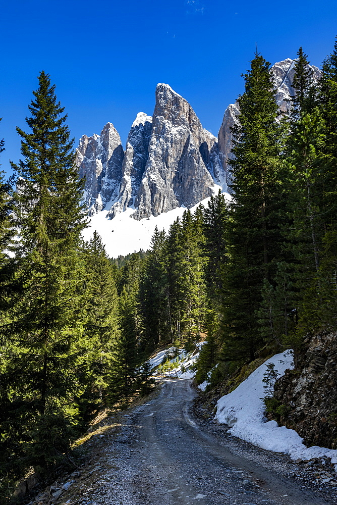 Road through forest under mountain in Dolomites, St. Peter, South Tyrol, Italy