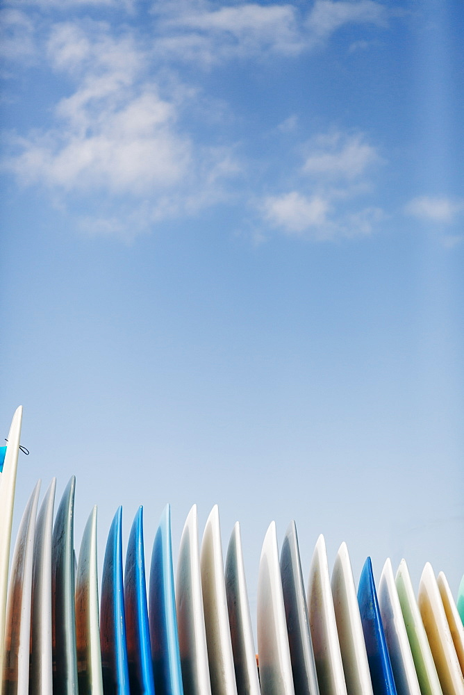 Row of surfboards under clouds