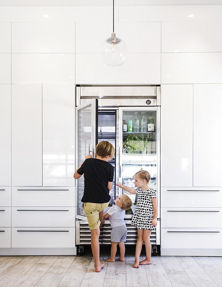 Children opening refrigerator - 1178-27593