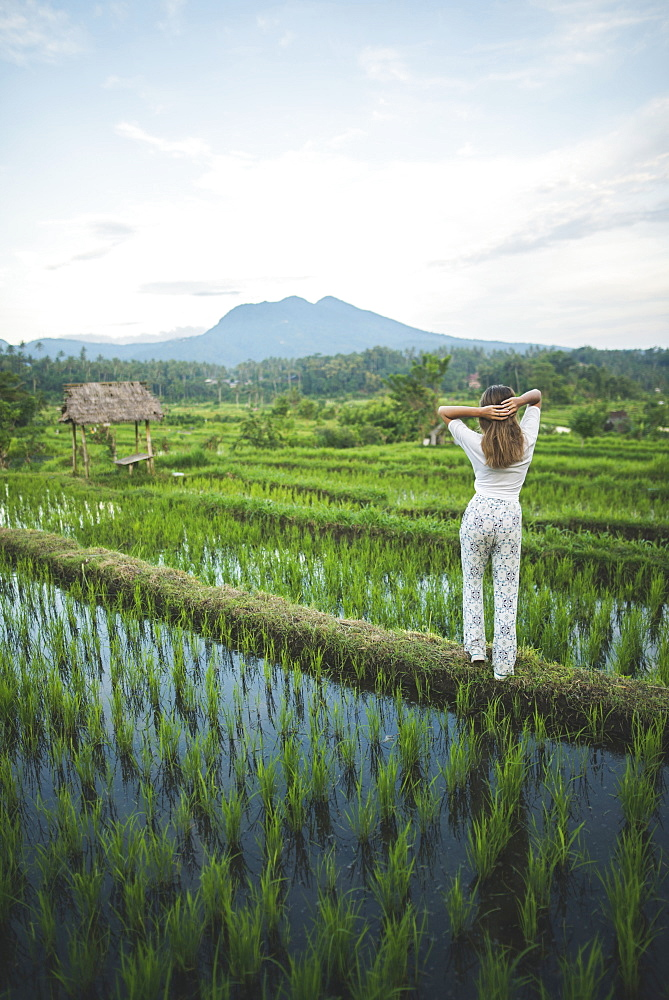 Rear view of woman standing in rice paddy in Bali, Indonesia