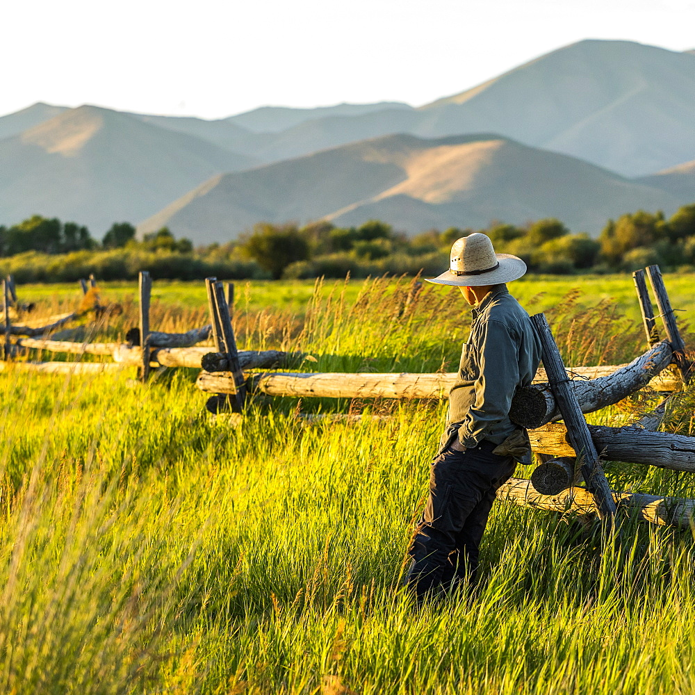 Farmer leaning on fence in Picabo, Idaho, USA