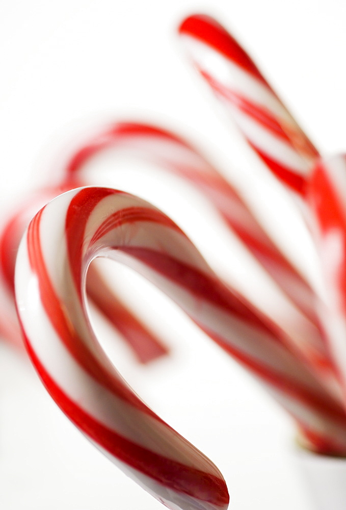Closeup of candy canes