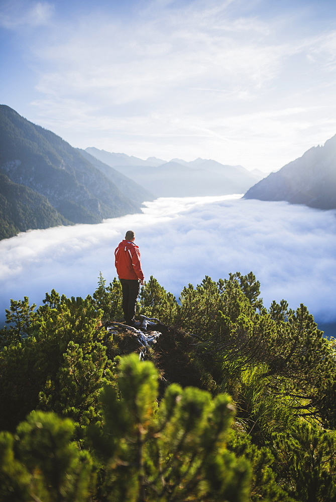 Austria, Plansee, Man standing in trees above valley in clouds in Austrian Alps