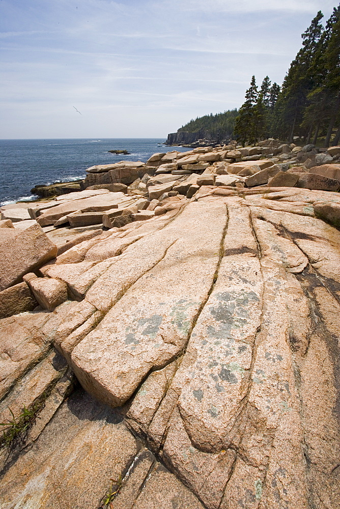 Rocky coast near Otter Cliffs Acadia Maine