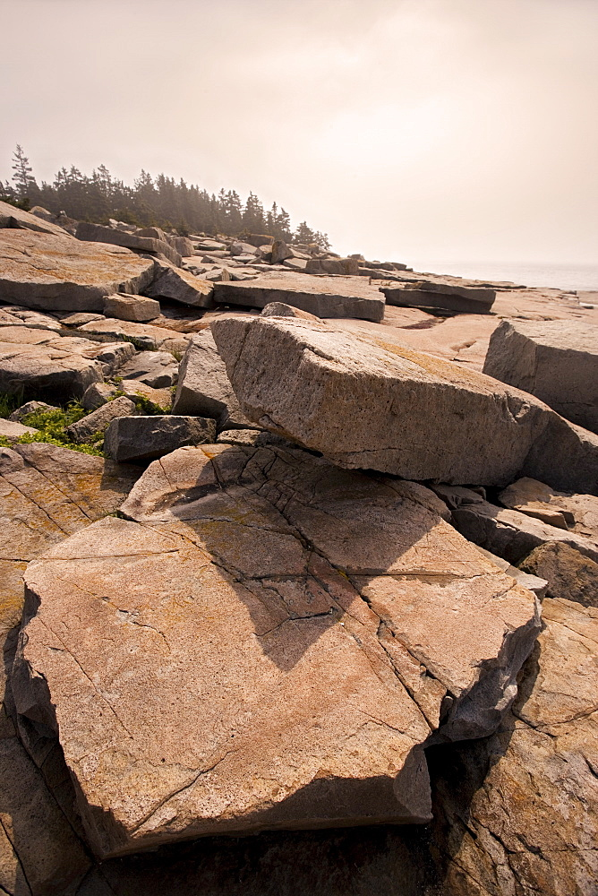 Rocky coast of Maine