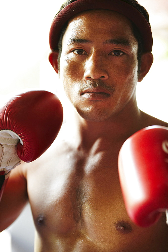 Portrait of mid adult male boxer in fighting stance