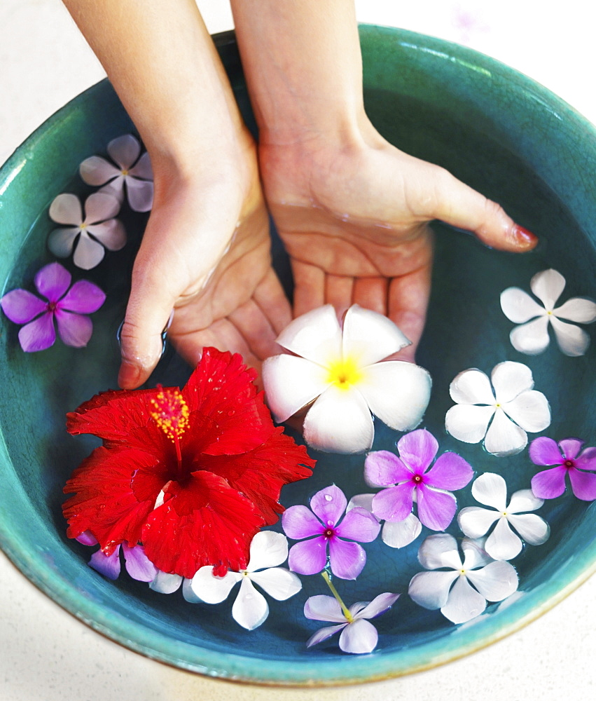 Human hands in bowl with floating flower heads