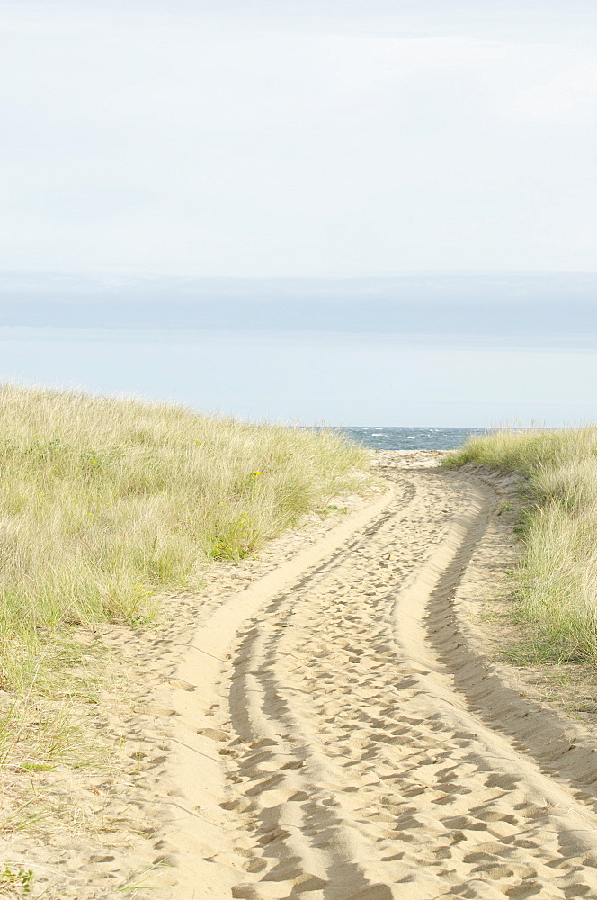 Path with tyre track, Nantucket, Massachusetts