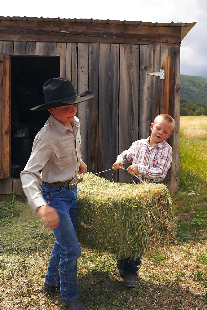 Boys collecting hay, USA, Colorado