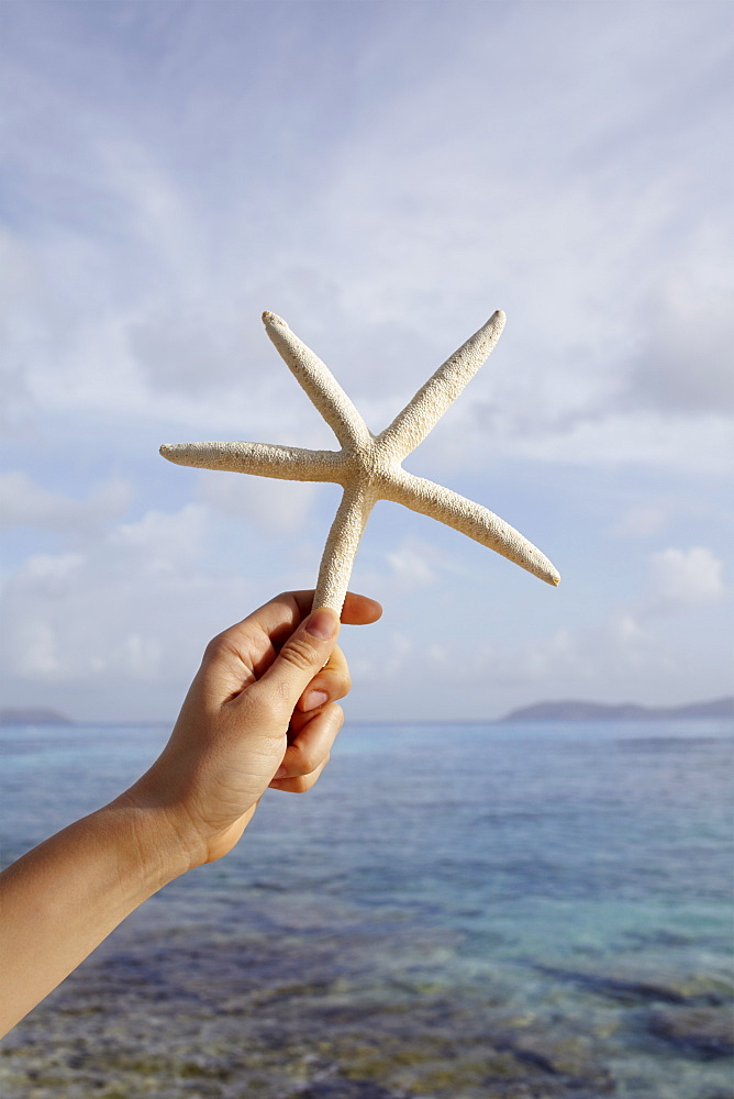 United States Virgin Islands, St. John, Starfish held by female hand, United States Virgin Islands, St. John