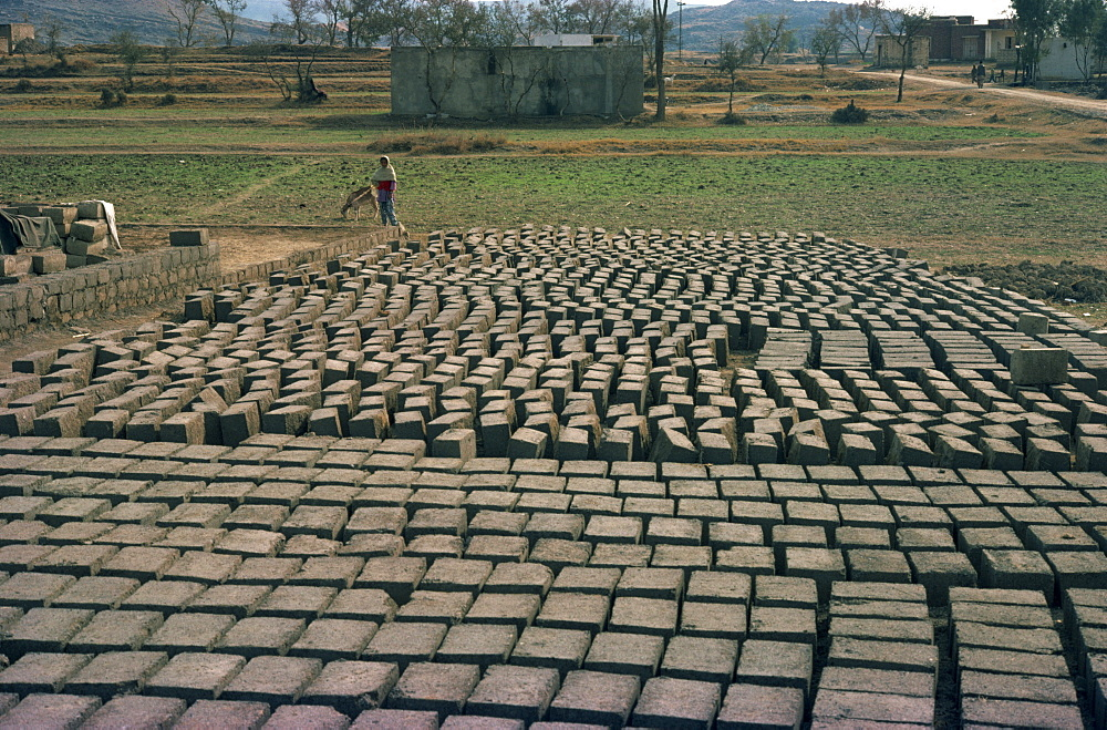 Brickworks near Taxila, Punjab, Pakistan, Asia