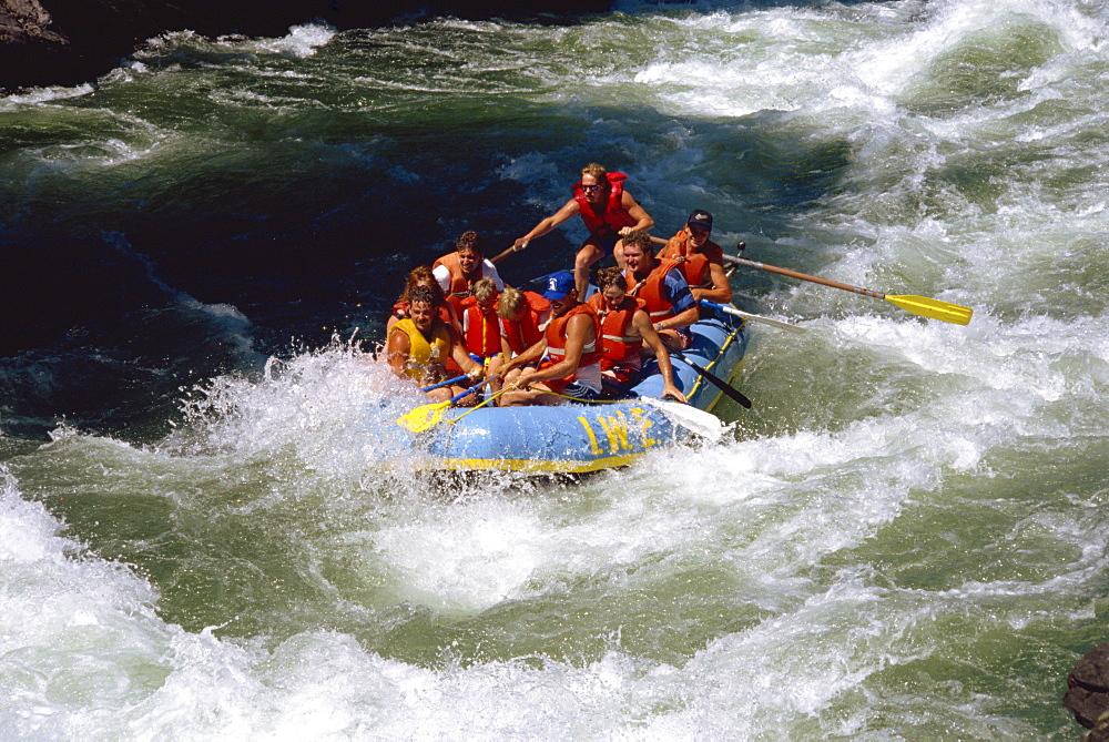 White water rafting, Adams River, British Columbia, Canada, North America