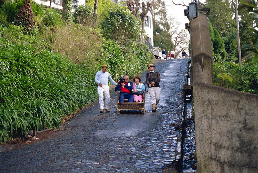 Monte, Madeira, Portugal, Europe