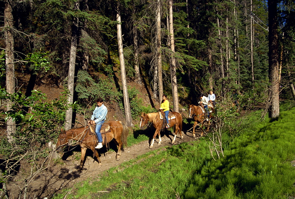Japanese tourists horse riding, Banff National Park, UNESCO World Heritage Site, Alberta, Canada, North America