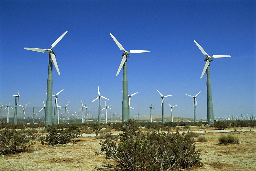 Wind farm near Palm Springs, California, United States of America, North America - 1-34971