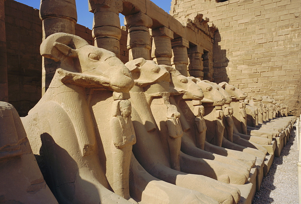 Temple of Karnak, Luxor, Egypt, North Africa