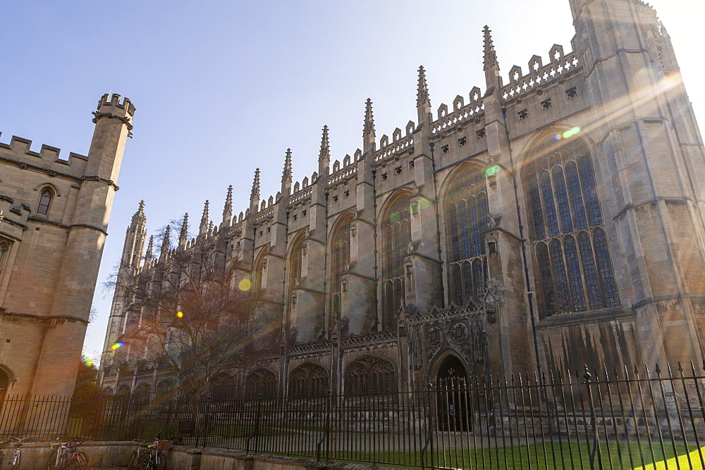 Kings College Chapel bathed in sun light, Cambridge, Cambridgeshire, England, United Kingdom, Europe