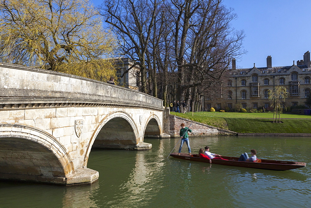 Punting along the river Cam with Trinity College in the background, the Backs, Cambridge, Cambridgeshire, England, United Kingdom, Europe